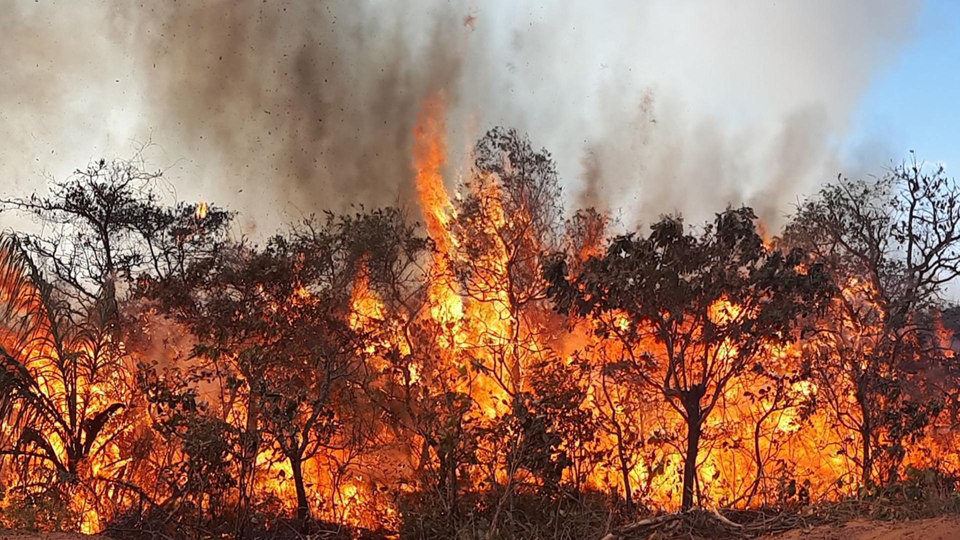 Bilder fragen brennenden mann ab foto 1
