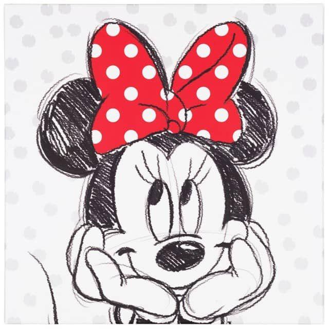 Mickey maus minnie maus weiße maus