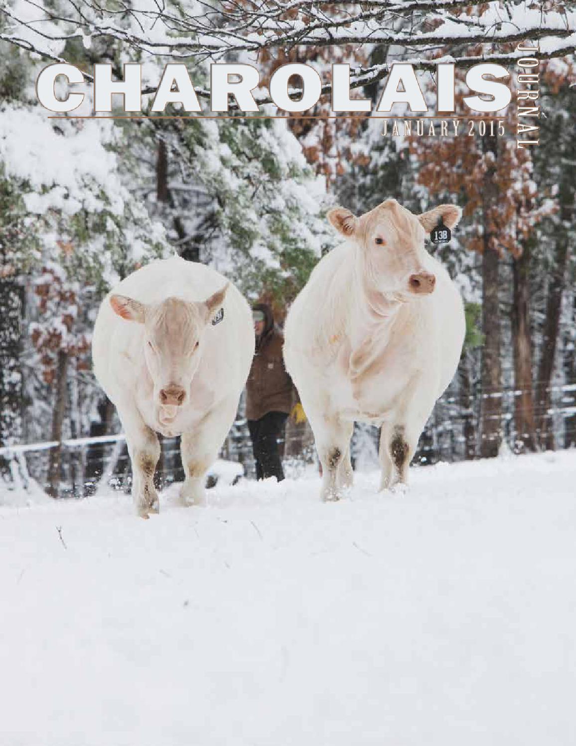 Nubbin, um hayden winter zu sehen foto 1