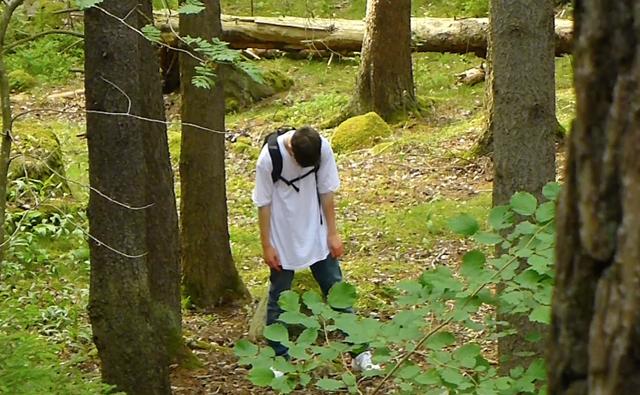 Wilder hardcore schweden hardcore film foto 2